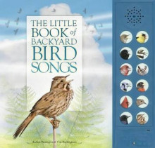 The Little Book of Backyard Bird Songs av Andrea Pinnington og Caz Buckingham (Innbundet)
