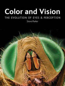 Color and Vision av Steve Parker (Innbundet)