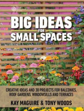 Big Ideas for Small Spaces av Kay Maguire og Tony Woods (Heftet)
