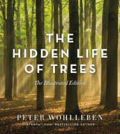 The Hidden Life of Trees av Peter Wohlleben (Innbundet)
