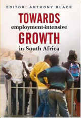 Omslag - Towards Employment-Intensive Growth in South Africa