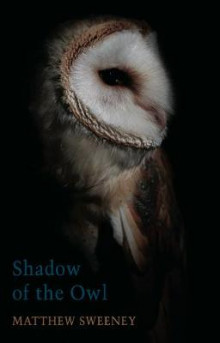 Shadow of the Owl av Matthew Sweeney (Heftet)
