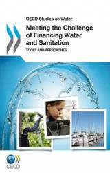 Omslag - Meeting the Challenge of Financing Water and Sanitation