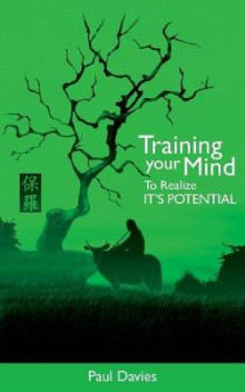 Training Your Mind to Realize it's Potential av Paul Davies (Heftet)