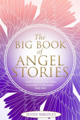 Omslag - The Big Book of Angel Stories