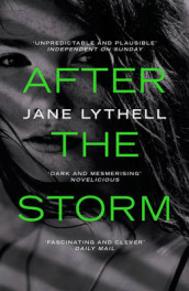 After the Storm av Jane Lythell (Heftet)