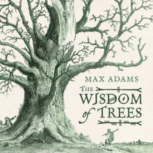 The Wisdom of Trees av Max Adams (Innbundet)