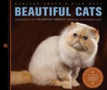 Beautiful Cats av Darlene Arden og Nick Mays (Heftet)