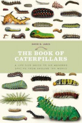 Omslag - The Book of Caterpillars