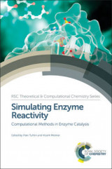 Omslag - Simulating Enzyme Reactivity