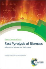 Omslag - Fast Pyrolysis of Biomass