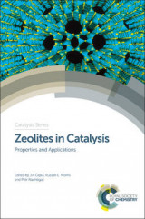 Omslag - Zeolites in Catalysis