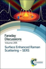 Omslag - Surface Enhanced Raman Scattering - SERS