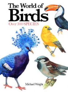 The World of Birds av Michael Wright (Heftet)