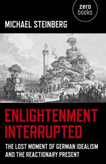Enlightenment Interrupted av Michael Steinberg (Heftet)