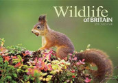 Wildlife of Britain A4 av Carousel Calendars (Kalender)
