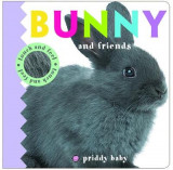 Omslag - Priddy Baby Bunny & Friends