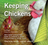Omslag - Keeping Chickens