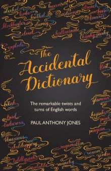 Accidental Dictionary av Paul Anthony Jones (Innbundet)