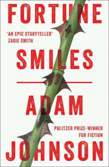 Fortune Smiles: Stories av Adam Johnson (Heftet)
