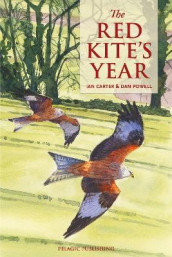 The Red Kite's Year av Ian Carter (Heftet)