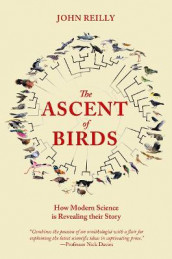 The Ascent of Birds av John Reilly (Heftet)