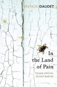 In the Land of Pain av Alphonse Daudet (Heftet)
