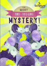 Omslag - The Most Mind-Boggling Mystery (8-11s)