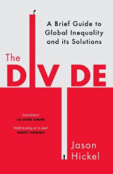 Omslag - The Divide: A Brief Guide to Global Inequality and its Solutions