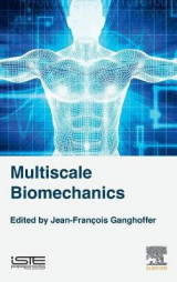 Omslag - Multiscale Biomechanics