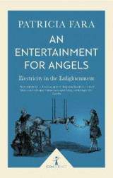 Omslag - An Entertainment for Angels (Icon Science)
