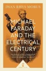 Omslag - Michael Faraday and the Electrical Century (Icon Science)