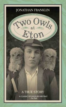 Two Owls at Eton av Jonathan S. Franklin (Innbundet)