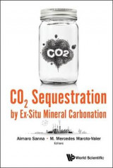 Omslag - CO2 Sequestration by Ex-Situ Mineral Carbonation