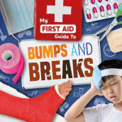 Bumps and Breaks av Joanna Brundle (Innbundet)