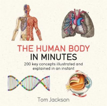 The Human Body in Minutes av Tom Jackson (Heftet)