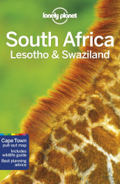 South Africa, Lesotho & Swaziland av Anthony Ham (Heftet)