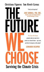 The Future We Choose: How to End the Climate Crisis av Christiana Figueres og Tom Rivett-Carnac (Heftet)