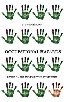 Occupational Hazards av Stephen Brown og Afsaneh Gray (Heftet)