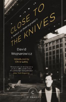 Close to the Knives av David Wojnarowicz (Heftet)