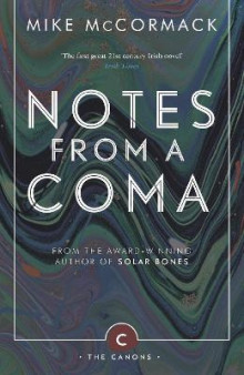 Notes from a Coma av Mike McCormack (Heftet)
