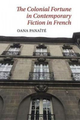 Omslag - The Colonial Fortune in Contemporary Fiction in French