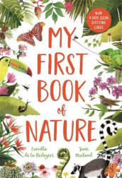 My First Book of Nature av Camilla De La Bedoyere (Innbundet)