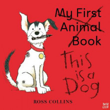 This is a Dog av Ross Collins (Heftet)
