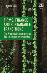 Omslag - Firms, Finance and Sustainable Transitions