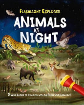 Flashlight Explorers: Animals at Night av Lisa Regan (Innbundet)