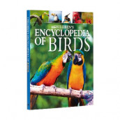Children's Encyclopedia of Birds av Claudia Martin (Innbundet)