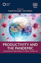 Omslag - Productivity and the Pandemic