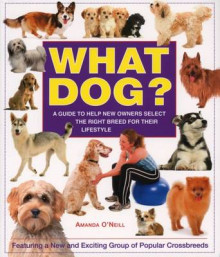 What Dog? av Amanda O'Neill (Heftet)