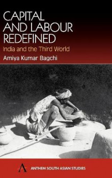Capital and Labour Redefined av Amiya Kumar Bagchi (Innbundet)